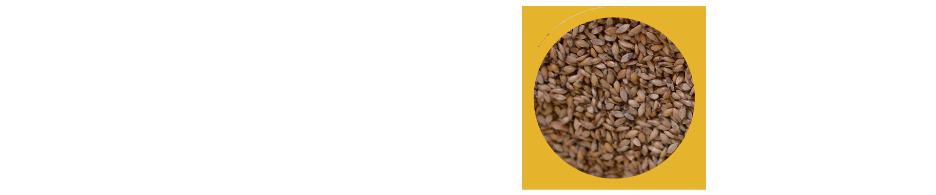 Saiba como solicitar sua amostra de sementes da Mineirão. Com uma simples mensagem você pode solicitar uma amostra grátis das sementes forrageiras da Sementes Mineirão. A equipe da Mineirão Sementes enviará a amostra para a sua casa, sem nenhum custo!