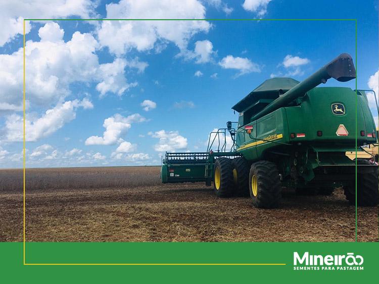 Começou a colheita da soja da safra 2018/19 no Brasil! Como já era esperado, a nova temporada foi antecipada em cerca de 30 dias este ano e os trabalhos de campo já foram iniciados em alguns pontos de Mato em Grosso.